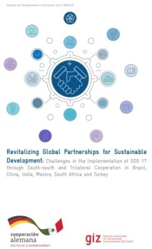 revitalizing-global-partnerships-for-sustainable-development-capa-8